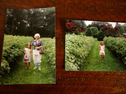 (left) little Marge and Oma pick berries, (right) my sister Mad in the raspberry field